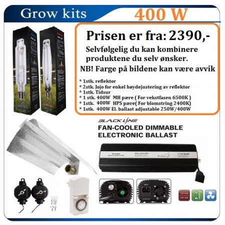 Light Kit 400W