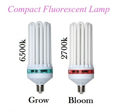 Compact Fluorescent Lamp CFL BloomLight 150w  Red