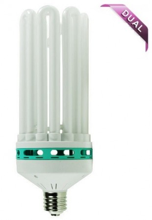 CFL 250W DualSpectrum